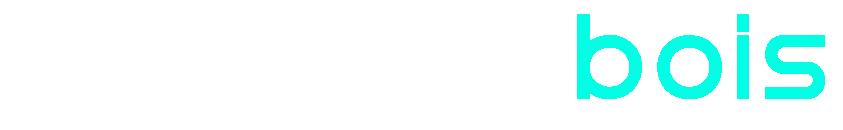 Concept Bois logo texte