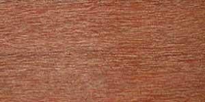 Essence de bois Kapur